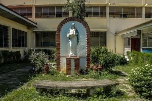 Grade School Golden Jubillee Garden
